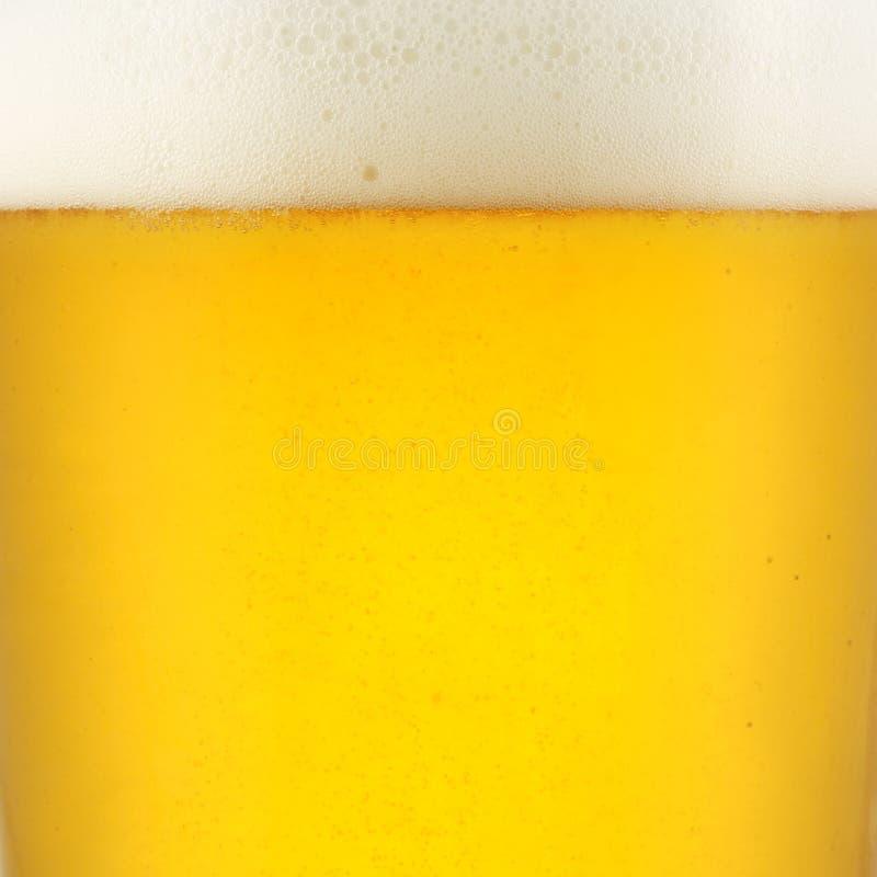 крупный план пива стоковая фотография