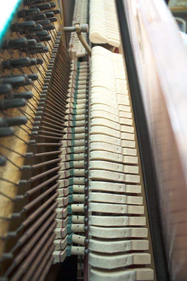 крупный план пользуется ключом рояль стоковые фото