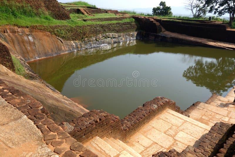 Крупный план пруда воды Sigiriya большого стоковое фото rf