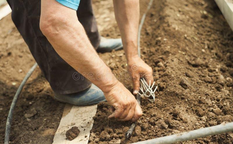 Крупный план руки работника в поле стоковое изображение rf