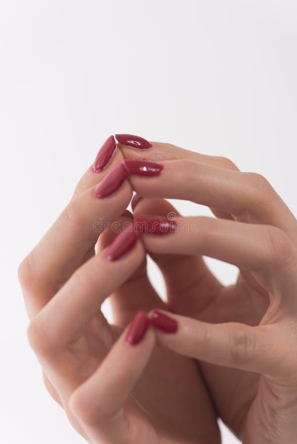 Крупный план рук молодой женщины стоковое фото rf