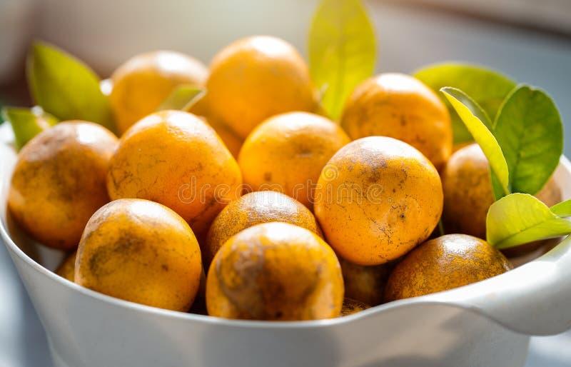 Крупный план свежие tangerines стоковое фото