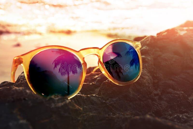 Крупный план солнечных очков с отражением пальмы кокоса дальше стоковые фото