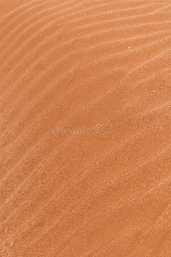 Крупный план текстуры дюны в пустыне стоковые фотографии rf