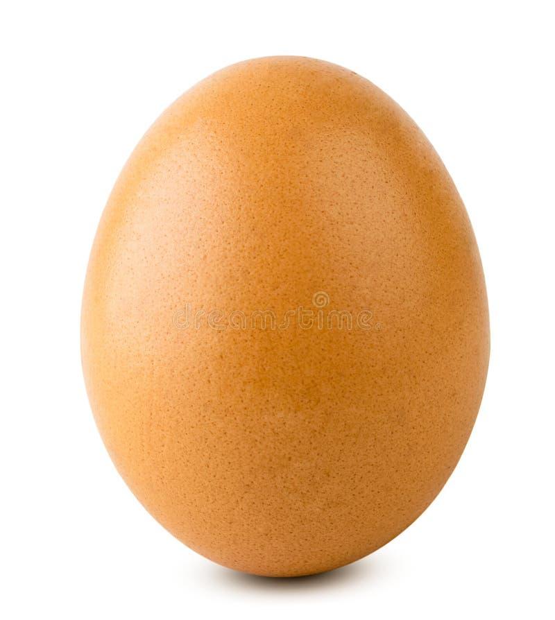 Крупный план яичка цыпленка на белизне изолировано стоковая фотография