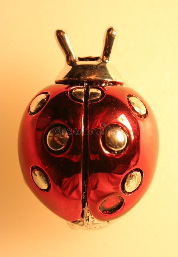 Крупный план Ladybird стоковая фотография rf