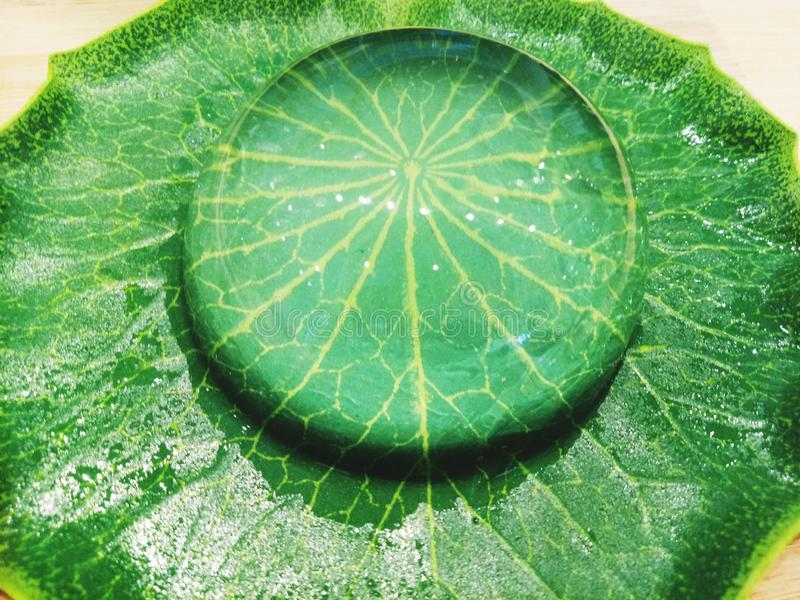 Крупный план mochi десерта падения воды r стоковое фото
