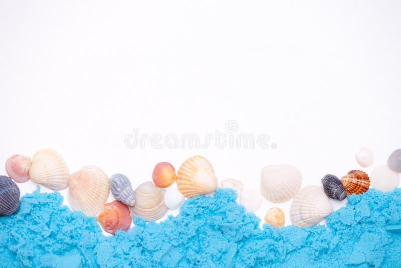 Крупный план seashells на белой предпосылке Рамка, космос экземпляра r стоковые фото