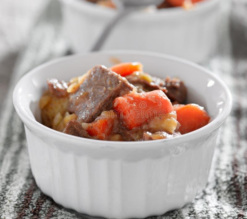 Крупный план stew говядины стоковое изображение
