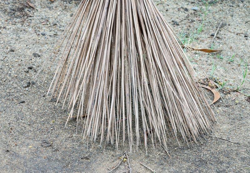 Крупный план веников кокоса стоковое фото rf