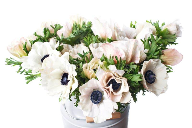 Крупный план ветреницы белых маков в вазе Много цветков - светлая предпосылка цветок зим стоковая фотография rf