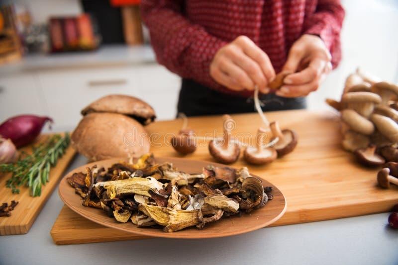 Крупный план грибов в блюде при женщина шнуруя грибы стоковое изображение rf