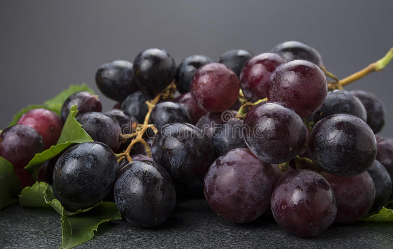 Крупный план группы черных виноградин на темной предпосылке стоковая фотография rf