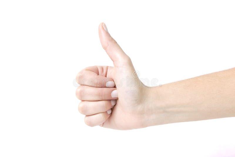 Крупный план женской руки показывая большие пальцы руки поднимает знак против белизны назад стоковое фото rf