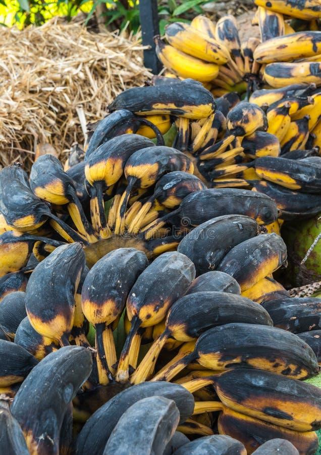 Крупный план к группе в составе органические тухлые бананы стоковые фотографии rf