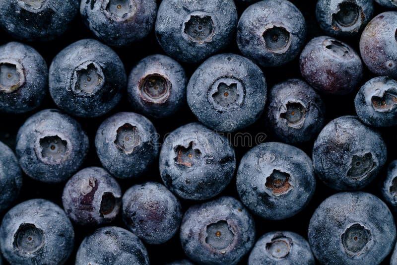 Крупный план макроса свежей вкусной ягоды голубики Еда лета Питание стоковое фото rf