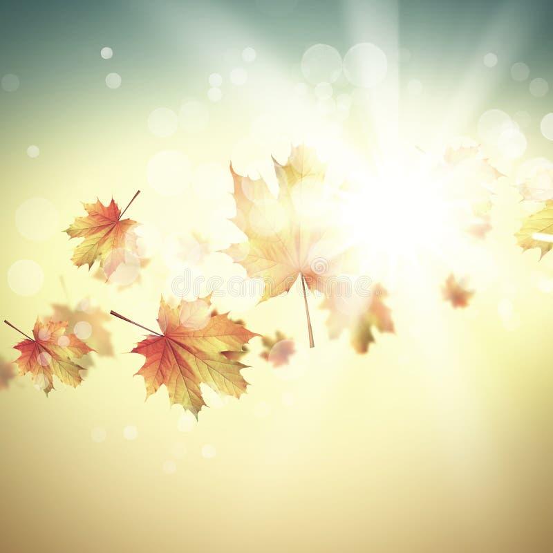 Download крупный план предпосылки осени красит красный цвет листьев плюща померанцовый Стоковое Фото - изображение насчитывающей место, чисто: 41650828