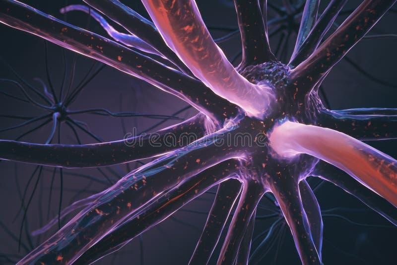 Крупный план розового нейрона иллюстрация штока
