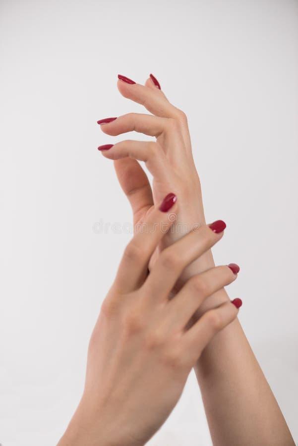 Крупный план рук молодой женщины стоковое изображение