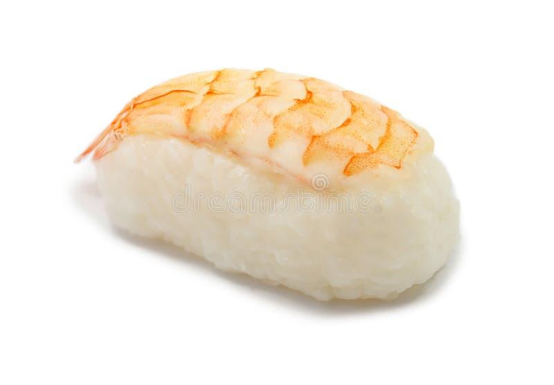 Крупный план суш креветки изолированный на белизне стоковое изображение rf