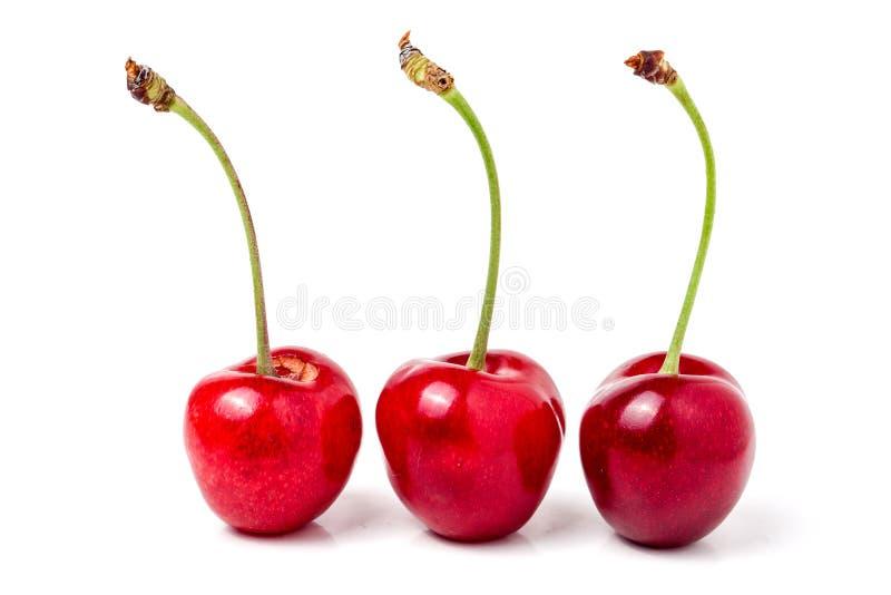 Крупный план сладостной вишни 3 изолированный на белой предпосылке стоковое фото rf