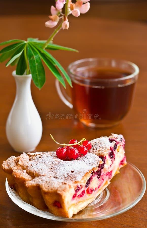 Крупный план чашки чаю с тортом стоковые изображения rf