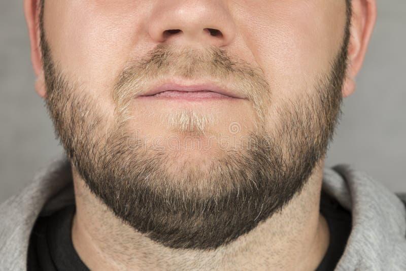 Крупный план человека бороды стоковое фото rf