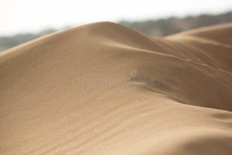 Крупный план дюны песка в Sidi Kaouki стоковая фотография rf