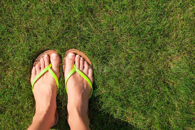 Крупный план ярких темповых сальто и ног сальто на зеленом цвете стоковая фотография