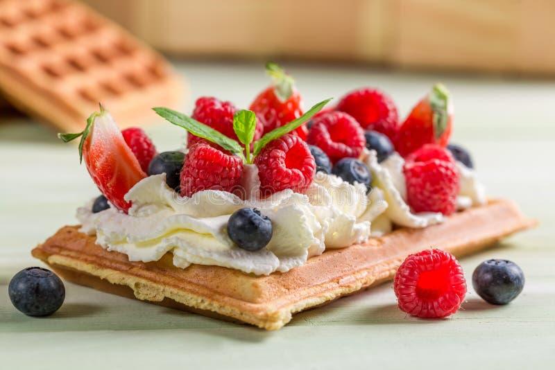 Крупный план waffle с взбитыми плодоовощами сливк и ягоды стоковое изображение