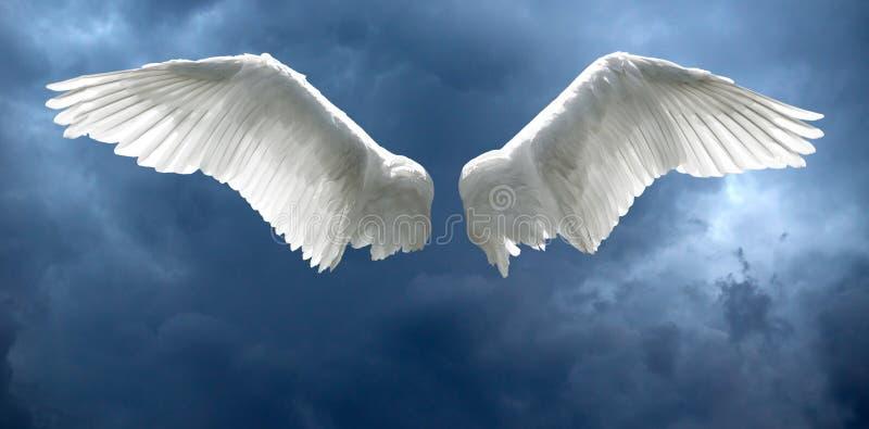 Крыла Анджела с бурной предпосылкой неба стоковые фотографии rf