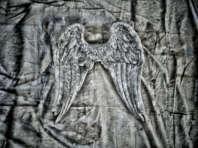 Крыла Анджела стоковые фото