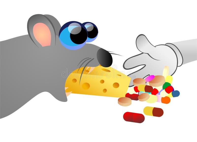 Крыса есть отравленное chesse иллюстрация вектора