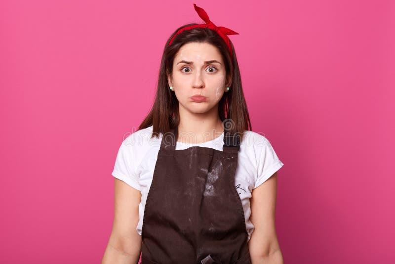 Крытая съемка трудный работая занятый европейский представлять домохозяйки изолированная над розовой предпосылкой в студии, смотр стоковая фотография