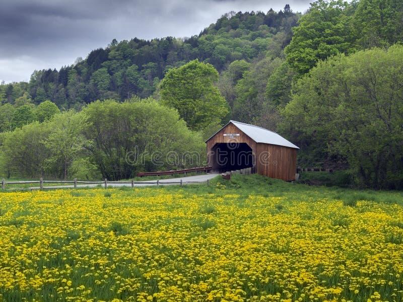 Крытый мост в Вермонте, США стоковые фотографии rf