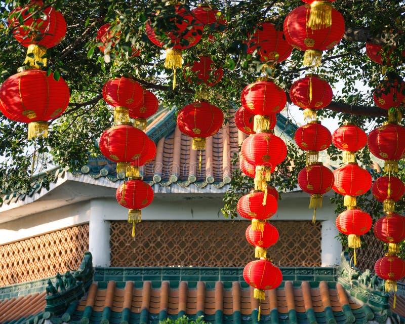 Крыша дома традиционного китайския под ветвью дерева с китайскими фонариками стоковое фото