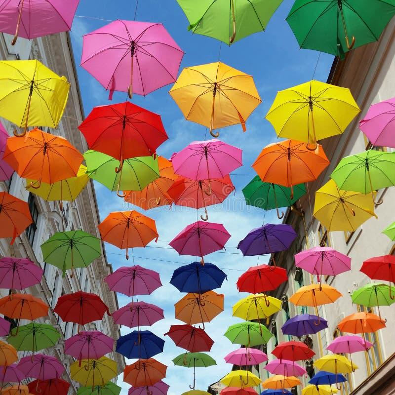 Крыша зонтиков стоковое фото rf