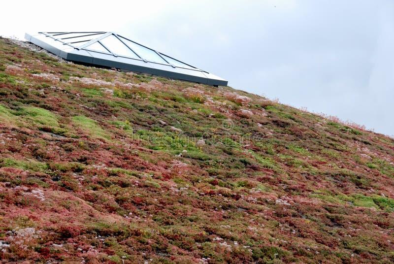крыша eco 2 стоковые изображения rf