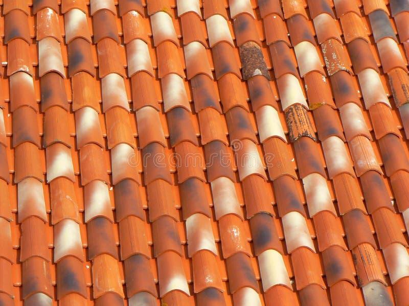 крыша motovun старая стоковая фотография rf