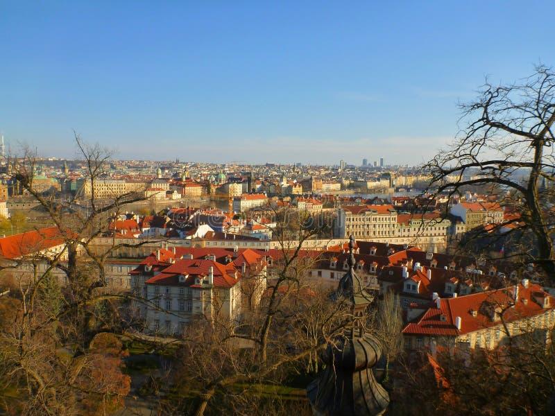 Крыши Праги стоковые изображения rf