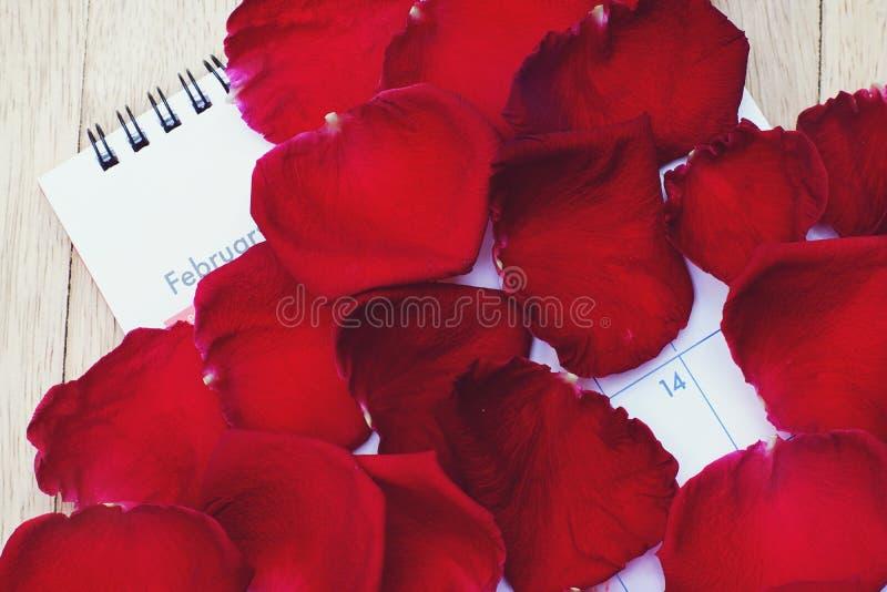 Крышка календаря мимо насыщает элегантный показ 14 Fabruary лепестка красной розы, концепцию планирования дня Валентайн стоковое фото rf