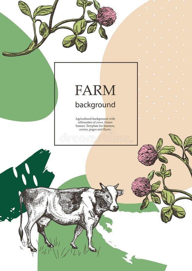 Крышка образца для аграрной брошюры Цветки коровы и луга Шаблон для молочной фермы Предпосылка для летчиков, знамен иллюстрация вектора