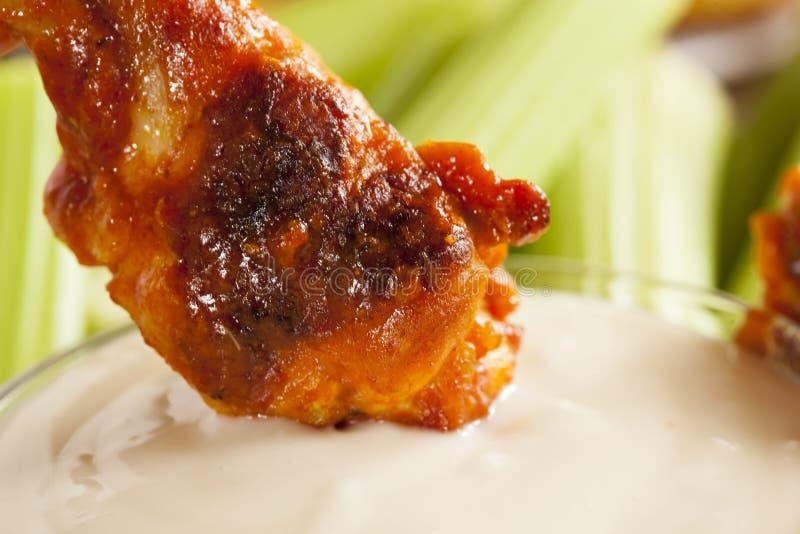Крыла горячих и Spicey буйвола цыпленка стоковые изображения