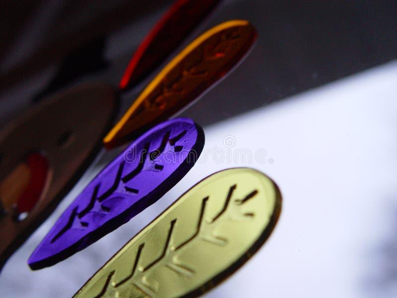 Крыла Мульти-цвета Турции стоковое фото rf