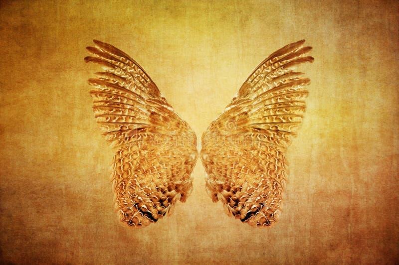 Крыла триперсток на текстурированной предпосылке grunge стоковое фото rf