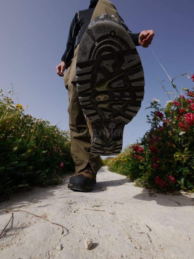 Кто-то идя на каменистый путь стоковая фотография rf