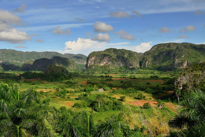 Куба, долина Vinales взгляда зеленая стоковая фотография