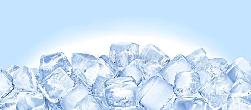 Кубики льда стоковая фотография
