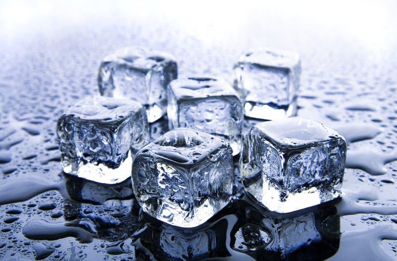 кубики морозят плавить стоковая фотография rf