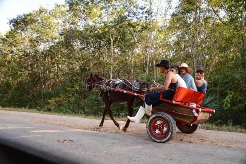 Кубинськое cariage лошади привода стоковое изображение rf